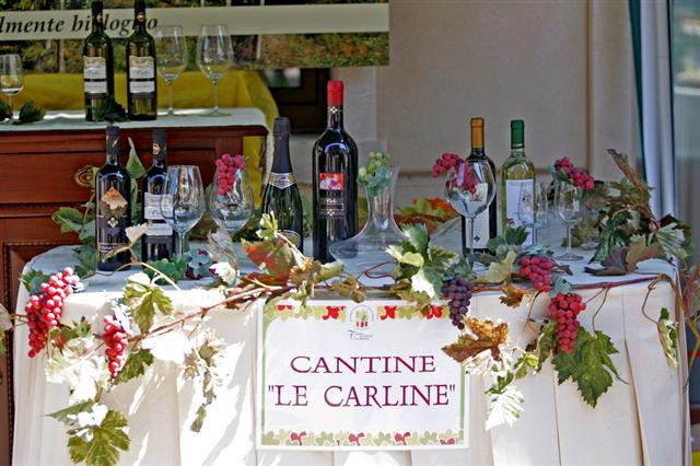 vini biologici le carline